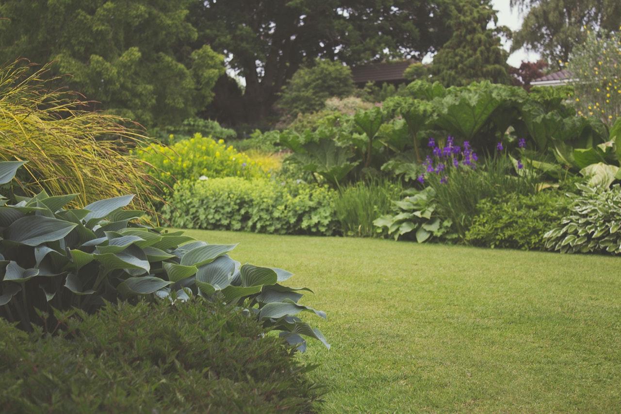 tuinen onderhoud