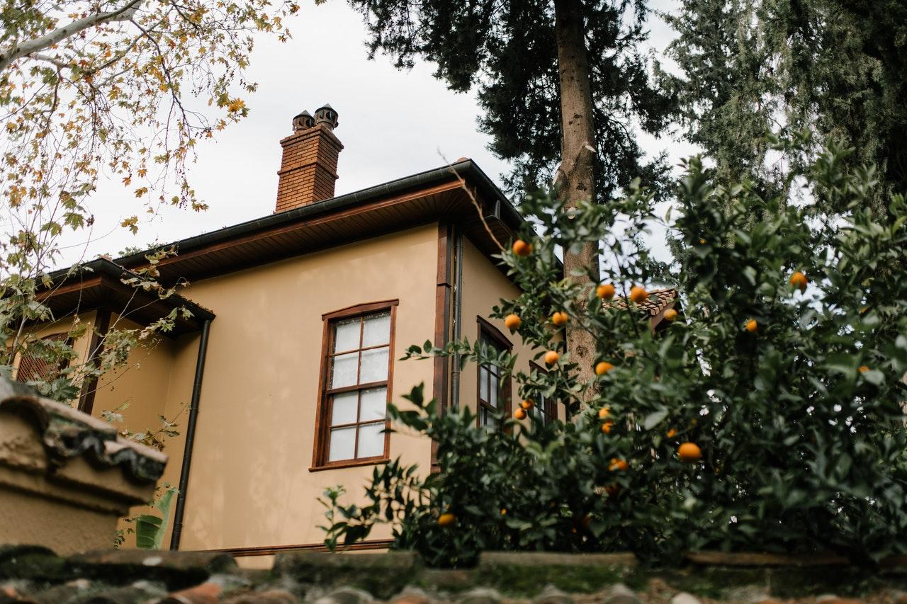 gevel huis met sinaasappelboom